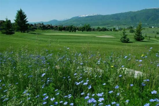 http://www.utahlodging.com/custimages/flowers-and-golf-web.jpg